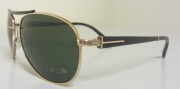 Tom Ford 113/S Charles sunglasses