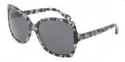 D&G DD3063 Sunglasses