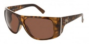D&G DD 8040 Sunglasses - (502/73) Havana/Brown
