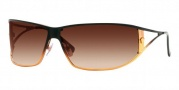 Versace VE2040 Sunglasses - 1166/13 Black and Light Brown/Transparent Lenses