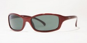 Ray-Ban Junior RJ9019S Sunglasses Sunglasses - 101/71 Dark Metallic Red/Green