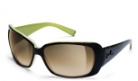 Smith Shoreline Sunglasses - Apple Tortoise / Brown Gradient