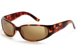 Smith Gallegos Sunglasses - Tortoise / Polarized Brown