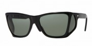 Persol PO 0009 Sunglasses Sunglasses - (95/58) Black / Crysrtal Green Polarized