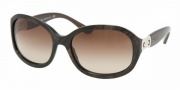 Bvlgari BV8064 Sunglasses Sunglasses - 506913 Velvet Brown / Brown Gradient