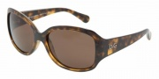 D&G DD8065 Sunglasses Sunglasses - 502/73 Havana / Brown