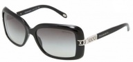 Tiffany & Co. TF4025B Sunglasses Sunglasses - 80013C Black / Gray Gradient