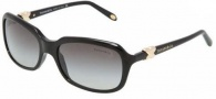 Tiffany & Co 4023 Sunglasses Sunglasses - 80013C Black / Gray Gradient