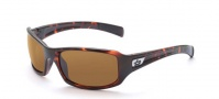 Bolle Winslow Sunglasses Sunglasses - 11391 Dark Tortoise / TLB Dark