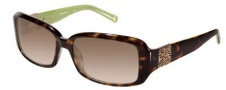 Tommy Bahama TB 528sa Sunglasses - Kiwi / Brown Gradient