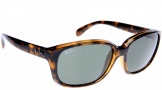 Ray-Ban RB4161 Sunglasses Sunglasses - 710/M2 Havana / Crystal Polarized Brown Gradient