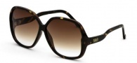 Black Flys Sunglasses Fly Palette Sunglasses - Tortoise 