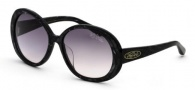 Black Flys Sunglasses Shiny Fly  Sunglasses -
