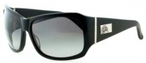 Black Flys Fly End Sunglasses Sunglasses - Shiny Black