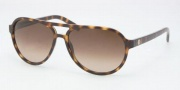 Tory Burch TY9009 Sunglasses Sunglasses - 510/13 Tortoise Brown Gradient