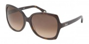 D&G DD3063 Sunglasses Sunglasses - 502/13 Havana / Brown Gradient
