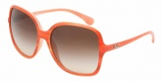 D&G DD8082 Sunglasses Sunglasses - 169113 Orange Watercolor / Brown Gradient
