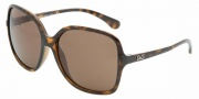 D&G DD8082 Sunglasses Sunglasses - 502/73 Havana / Brown