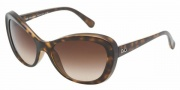 D&G DD8083 Sunglasses Sunglasses - 502/13 Havana Brown / Gradient
