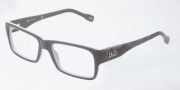 D&G DD1210 Eyeglasses Eyeglasses - 1867 Gray on Light Gray
