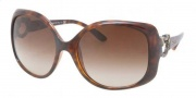 Bvlgari BV8086B Sunglasses Sunglasses - 967/13 Dark Havana / Brown Gradient 