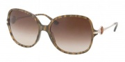 Bvlgari 8087A Sunglasses Sunglasses - 515613 Croisette Brown / Brown Gradient