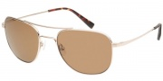 Modo Alberto Sunglasses Sunglasses - Gold / Mineral Glass Polarized Lens