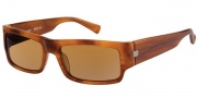 Modo Guido Sunglasses Sunglasses - Cognac / Polarized Lens