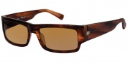 Modo Guido Sunglasses Sunglasses - Dark Acorn / Polarized Lens