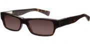 Modo Renzo Sunglasses Sunglasses - Tortoise / Polarized Lens