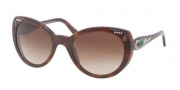 Bvlgari BV8091B Sunglasses Sunglasses - 851/13 Dark Havana / Brown Gradient