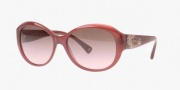 Coach HC8010B Sunglasses Payton Sunglasses - 504114 Berry Brown / Gradient Pink
