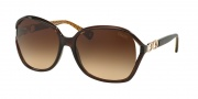 Coach HC8018 Sunglasses Natasha Sunglasses - 503513 Brown / Brown Gradient