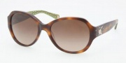 Coach HC8022B Sunglasses Cameron Sunglasses - 503113 Tortoise / Brown Gradient