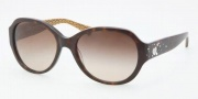 Coach HC8022B Sunglasses Cameron Sunglasses - 503313 Dark Tortoise / Brown Gradient