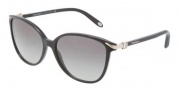 Tiffany & Co. TF4061G Sunglasses Sunglasses - 80013C Black / Gray Gradient