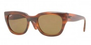 Ray-Ban RB4178 Sunglasses Sunglasses - 820/73 Shiny Havana / Brown