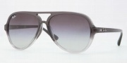 Ray-Ban RB4125F Sunglasses Sunglasses - 10818G Grau Gradient / Light Gray Gradient