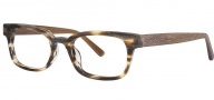 OGI Eyewear 3113 Eyeglasses Eyeglasses - 1451 Light Smoke Tortoise / Light Brown