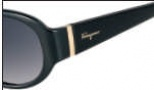 Salvatore Ferragamo SF605S Sunglasses Sunglasses - 001 Black