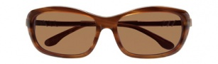 BCBGMaxazria Enchanted Sunglasses Sunglasses - BRO Brown Horn