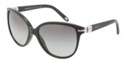 Tiffany & Co. TF4064B Sunglasses Sunglasses - 80013C Black Gray Gradient