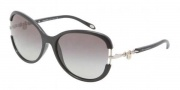 Tiffany & Co. TF4067 Sunglasses Sunglasses - 80013C Black Gray