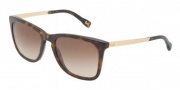 D&G DD3081 Sunglasses  Sunglasses - 502/13 Havana / Brown Gradient