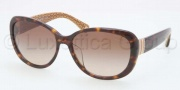 Coach HC8040BF Sunglasses Sunglasses - 503313 Dark Tortoise / Brown Gradient