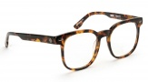 Spy Optic Rhett Eyeglasses Eyeglasses - Tiger Tortoise