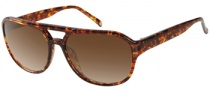 Gant GS Etna Sunglasses Sunglasses - TO-34P: Tortoise