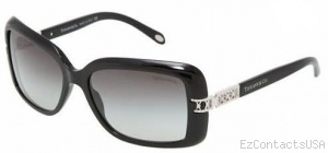Tiffany & Co. TF4025B Sunglasses - Tiffany & Co.
