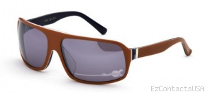 Black Flys Tequila Flyrise Sunglasses - Black Flys