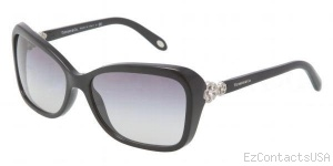 Tiffany & Co. TF4052B Sunglasses - Tiffany & Co.